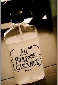 all-purpose cleaner pic
