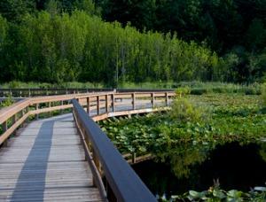 silver_lake_boardwalk